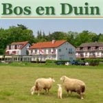 Bos en Duin